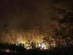 Wildfires burned 104,000 acres in North Carolina during the first six months of 2011. In an average year, the state loses 24,000 acres to wildfires.