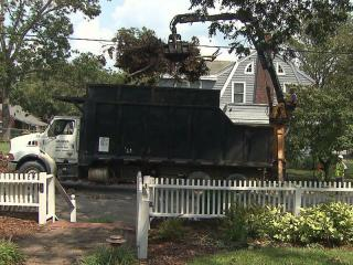 A crew hired by the state Department of Transportation picks up tree limbs in a Tarboro neighborhood on Sept. 12, 2011, that were downed by Hurricane Irene.
