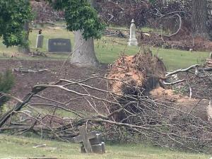 Five months after an April 16, 2011,  tornado uprooted trees in historic cemeteries near downtown Raleigh, the city is still waiting on approval to clean up the damage.