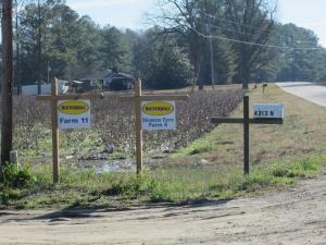 Butterball farm in Hoke County