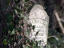 Group seeks to maintain slave cemetery near Sanford