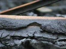 Reward offered in Durham arson cases