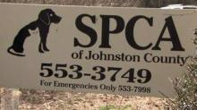 Johnston County SPCA accused of neglect