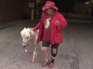 Leslie Presson leads her miniature horse, Mr. Butters, from the North Carolina State University Animal Veterinary Center on Sunday, March 25, 2012. The horse was attacked by animals in a pen a few feet from her Clayton home March 12.