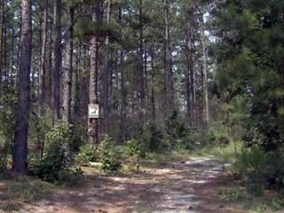 A woman was killed on June 21, 2012, after being knocked from a golf cart by a security cable across a rural path near Spring Lake, Harnett County authorities said.