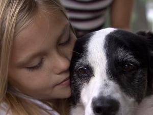 A Youngsville family reunited this week with the dog they thought they lost forever. After four years, Brandy Metcalf, her husband Dave and their three children got to take Cassey, the dog they had rescued from the SPCA 11 years ago, home again.