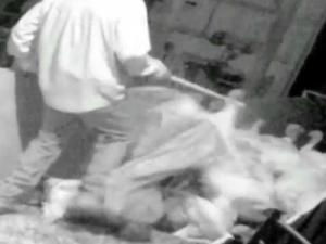 Mercy for Animals took hidden-camera video during October 2012 that the group says provides evidence of turkey abuse at farms linked to Butterball in Sampson, Duplin, Lenoir and Onslow counties.