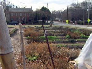 Raleigh City Farm, at 800 N. Blount St.