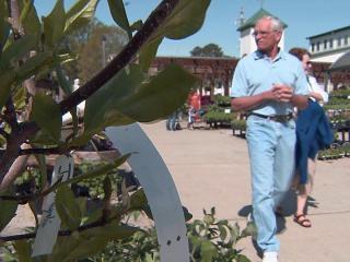 Spring-like weather has business blooming for local greenhouses.