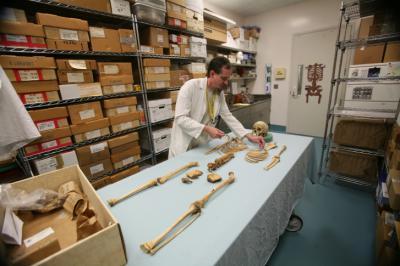 Inside the medical examiner's bone room