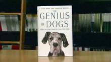 IMAGE: Duke dog study fetches national attention