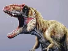 Newly discovered dinosaur would have competed with T-rex