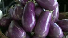 Egg Plant; Farmer's Market