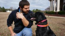 IMAGE: Man reunites with 'therapy dog' after two years