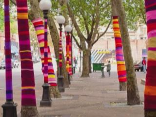 Trees clad in sweaters will line Glenwood South as part of a local art project, which will later benefit the homeless.