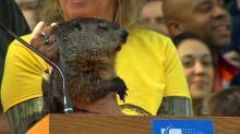 IMAGES: Groundhog Day 2014