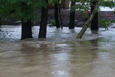 This image shows flooding along Ray Avenue in Fayetteville early Wednesday, April 30, 2014.