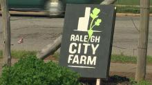 IMAGE: Raleigh City Farm blooms just blocks from downtown