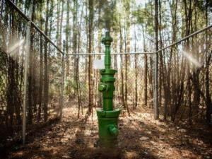 An explortary gas well, known as Butler No. 3, has been shut off at a site just off U.S. 421 north of Sanford.