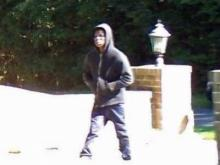 Orange County authorities were seeking the public's help Tuesday to identify two men who broke into a home Monday at the intersection of Ivey Road and Old Greensboro Highway in Chapel Hill.