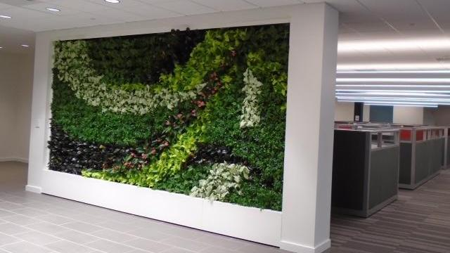 Lenovo has installed six Living Green Walls, custom, plant-covered designs by GSky Plant Systems, Inc.