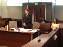Attorney Dieter Mauch speaks in court Friday, Nov. 14, 2014.