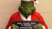 IMAGES: Apex police nab the Grinch