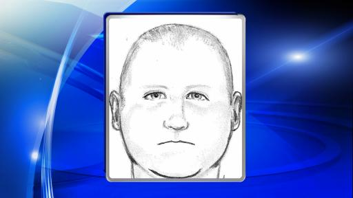 Fayetteville police released a sketch of one of three men they are searching for in the robbery and beating of 86-year-old George Webb