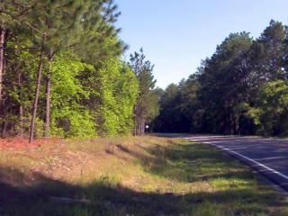 Hunters found the body of an unidentified woman in a wooded area off the 6800 block of Cedar Creek Road south of Fayetteville on May 2, 2015.