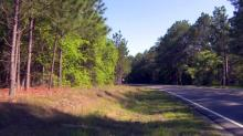 IMAGES: Woman's body found in Cumberland woods