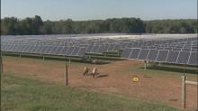 IMAGE: Debate over renewable energy in NC continues as tax credit set to expire