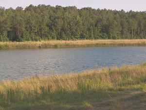 A man drowned while swimming with friends Saturday in a pond off N.C. Highway 210 in Spring Lake, police said.