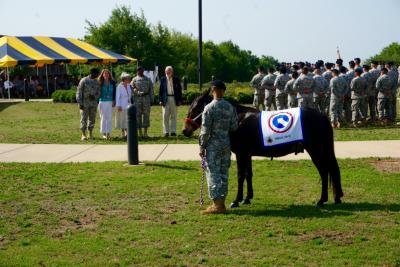 Pfc. John Huck Blackjack was introduced Wednesday, June 24, 2015, as the new mascot for the 1st Sustainment Command at Fort Bragg.