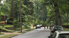 IMAGE: Downed tree knocks out power to Raleigh neighborhood