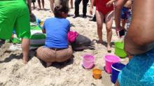IMAGES: Dolphin bitten by shark washes ashore at Kure Beach