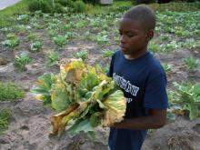 Farm camp generates big changes in small Edgecombe County town