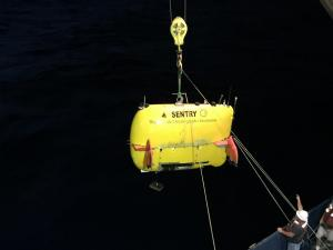 Launch of autonomous underwater vehicle Sentry from the research vessel Atlantis. (Credit: Cindy Van Dover, Duke University)