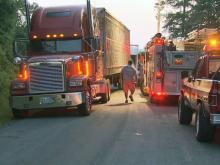Several hogs were killed early Monday when a tractor-trailer overturned on a rural road in Wayne County, according to the North Carolina State Highway Patrol.