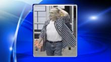 IMAGES: Public help wanted in Walmart larceny case