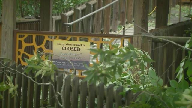 North Carolina Zoo closed