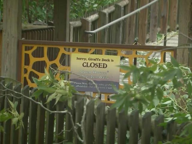 North Carolina Zoo closed
