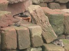 Legacy of Winston-Salem brick maker continues after death