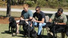 IMAGES: Marine K9s reunited with former handlers
