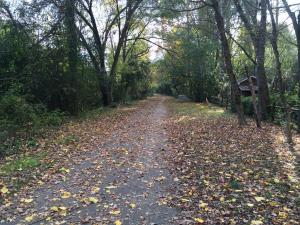Durham police are investigating a violent sexual assault that was reported Wednesday night on the Ellerbe Creek Trail near Washington Street and West Club Boulevard.