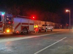 A pedestrian died Friday evening after being hit by a train in Benson, Johnston County officials said.
