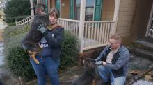 IMAGES: Fayetteville family escapes fire, credits 'hero dogs'
