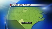 7-year-old killed in dog attack
