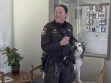 Durham deputy, rescued dog reunite permanently