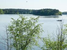 Falls Lake rescue