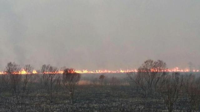 Wildfire in eastern NC